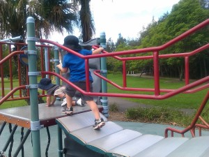 Fun at one of the playgrounds in Bicentennial Park.